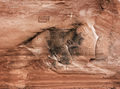 ancient,fish,anasazi,rock,art,navajo,nation
