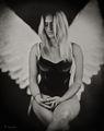 sarah,wet,plate,collodion,tintype,angel