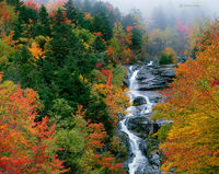 silver,cascade,fog,new,hampshire,autumn,new,england