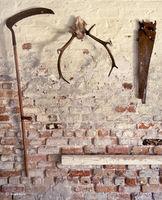 barn,tools,skull,illinois