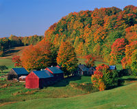 vermont,farmstead,countryside