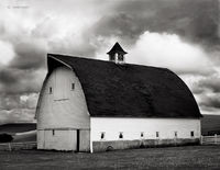 weathered,roof,barn,washington