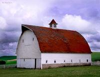 palouse,barn,washington
