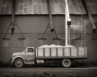 grain,cooperative,old,truck,palouse,region,genesee,idaho