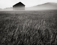 ghost,barn,michigan,farm