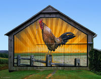 rooster,barn,pennsylvania,art