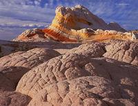 sandstone,elegance,colorado,plateau,slickrock,wilderness