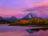 moran,dawn,wyoming,autumn,grand,teton,national,park