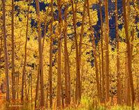 radiant,aspen,colorado,autumn