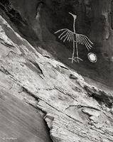 canyon,visitor,colorado,plateau,ancestral,puebloan,petroglyph