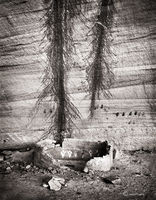 withering,structure,colorado,plateau,ancestral,puebloan,site