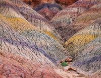 chinle,concerto,colorado,plateau,formations