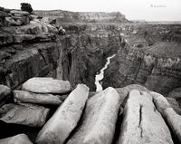 toroweap,grand,canyon,colorado,river,arizona