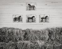 Vermont Horse Barn
