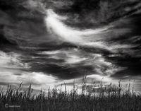 prairie,spirit,illinois