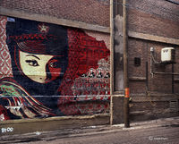 shepard,fairey,alley,chicago