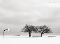 winter,solitude,chicago