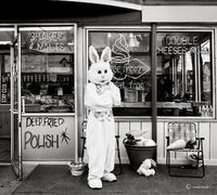 easter,bunny,chicago
