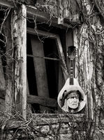 willie,mandolin,illinois