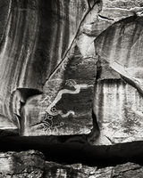 lone,serpent-rock-art-bw