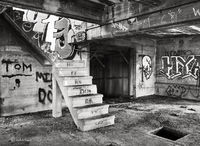 blighted,penthouse,abandoned,building,chicago
