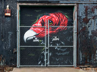 buzzard,street,art