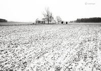 christmas,morning,indiana,farmhouse