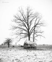 hatstack,indiana,amish,farm,winter