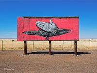 alexis,diaz,street,art,navajo,nation,arizona,painted,desert,project