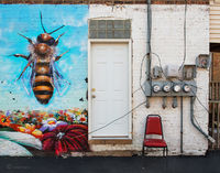 hive,entry,chicago,street,art,bee