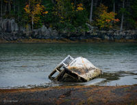 abandoned,boat,new,brunswick,cove,canada, little,scottie