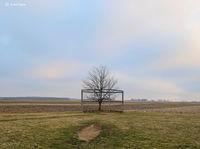 field,of,dreams,farmland,baseball,field