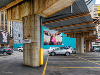 Moose,chicago,street,art,parking,lot,chill