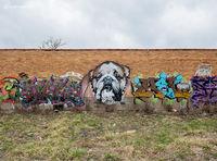 Bull Dog Graffiti