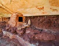 shepherd,granary,colorado,plateau,ancestral,puebloan,anasazi