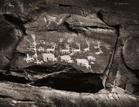 buffalo,hunt,colorado,plateau,ancestral,puebloan,petroglyphs
