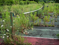 reclamation,abandoned,tennis,court,rust,belt