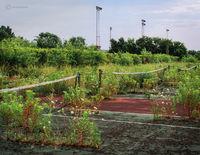 forgoetten,abandoned,school,tennis,courts,rust,belt