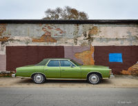 ford,ltd,joliet,illinois,urban,landscape
