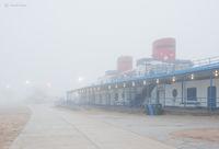 foggy,morning,chicago,beach