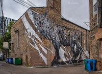 city,predator,coyote,mural,kwoone,chicago