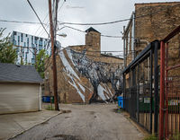 in,the,bowels,of,the,city,chicago,coyote,mural,kwoone