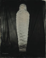 the,mummy,wet,plate,chicago