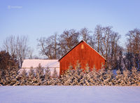 red,barn,sunrise,christmas,morning,2017,indiana