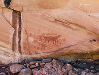 red,bear,panel,pictograph,colorado,plateau