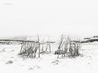 old,navajo,ceremonial,house,snow,ganado,arizona