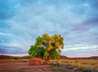 Last Day's Light On A Navajo Hogan