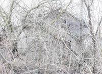 abandoned,house,ghost,rust,belt