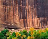 autumn,ancient,colorado,plateau,ancestral,puebloan,site