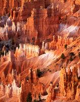hoodoos,dawn,colorado,plateau,bryce,canyon